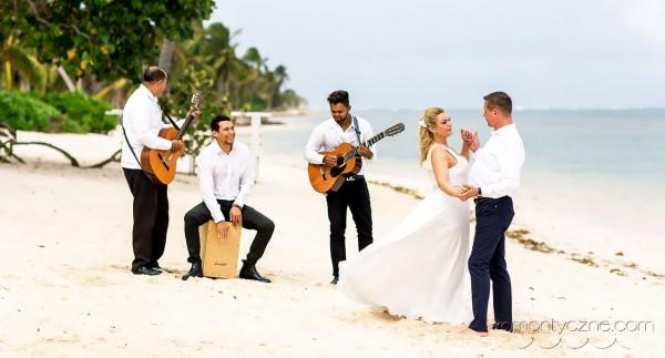 Śluby oficjalne na tropikalnej plaży, organizacja ślubu