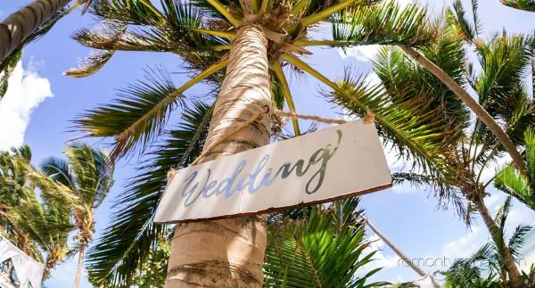 Nieziemska atmosfera wśród palm