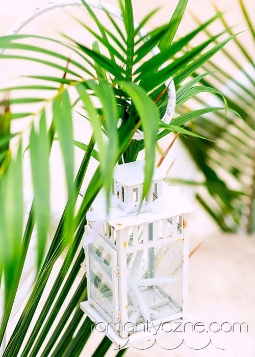 Tropikalne akcenty roślinne