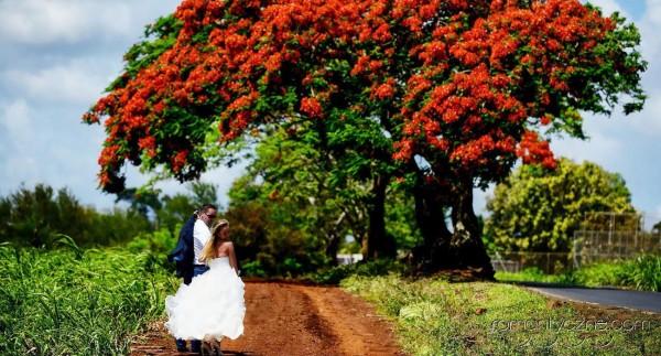 Śluby na prywatnej plaży, organizacja ceremonii