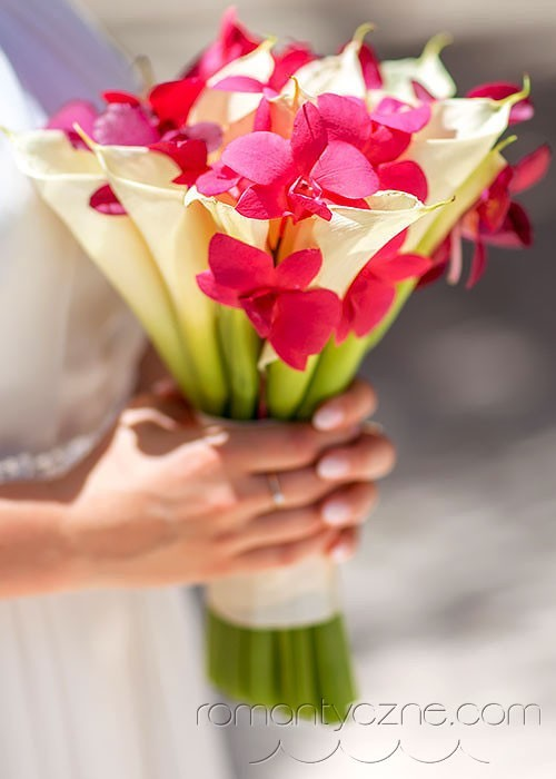 Śluby symboliczne na prywatnej plaży, organizacja ślubu