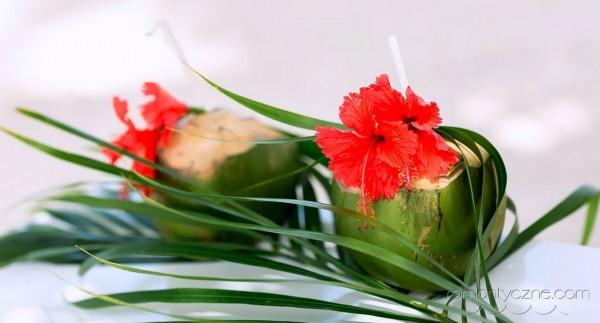 Tropikalne owoce