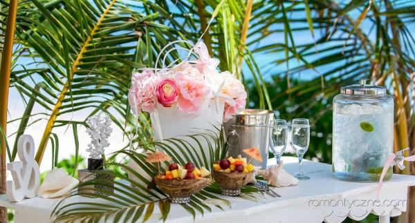 Śluby za granicą Saona Island, Dominikana, Karaiby