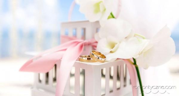 Śluby oficjalne na tropikalnej plaży, organizacja ceremonii